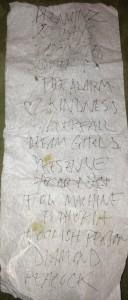 Wymond Miles' Set List - The Fresh & Onlys - Bottom of the Hill - February 27, 2013